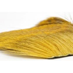 Chevreuil sur peau (poils d'hiver)
